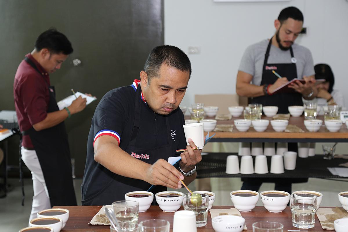 11 ชื่อผู้เข้ารอบ การประกวดสุดยอดเมล็ดกาแฟไทย ACID 2018